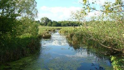 река Турушка